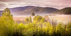 Forest and mountains landscape - Forest and mountains landscape of Bieszczady in Poland