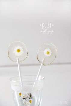 Lollipops with real daisies. Learn how.