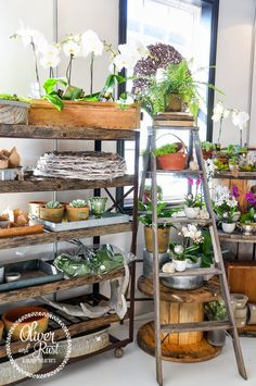 Container gardening can come in all different containers as displayed here! Oliver and Rust Vintage Interiors