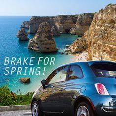 We brake for Spring! Fiat 500 Pop, Spring Break, Winter Vacations