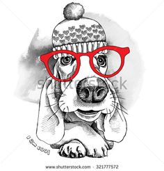 The poster dog Basset Hound portrait in the knitted hat and with glasses. Vector illustration. - stock vector