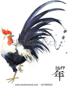 Rooster. Rooster Year. Chinese New Year of the Rooster. Watercolor Illustration. Rooster Chinese Painting. New Year card. - stock photo