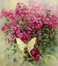 Pretty Butterfly and Pink Flowers pink butterfly animated pretty roses gif sparkle