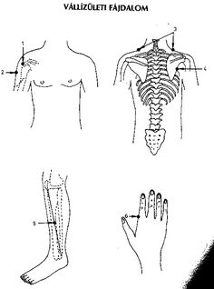 hatású. Acupressure, Physical Therapy, Workout, Work Outs, Physical Therapist