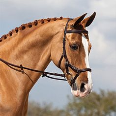"""The Micklem Competition Bridle is ergonomically designed from the inside out to fit the shape of the horse's skull. This is the most comfortable, flexible and effective bridle ever designed. Made from 5/8"""" Eco-friendly, hand finished leather and comes complete with rubber reins."""