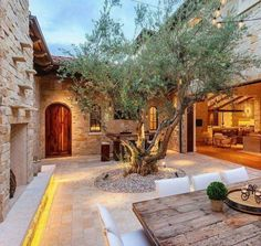 Patio courtyard win a tree in the middle - luxury outdoor living space with indoor outdoor area