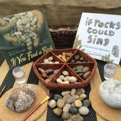 A simple invitation to start the year. 'Painting' rocks with water. Preschool Science, Preschool Classroom, In Kindergarten, Preschool Ideas, Forest Classroom, Preschool Education, Preschool Books, Future Classroom, Teaching Ideas