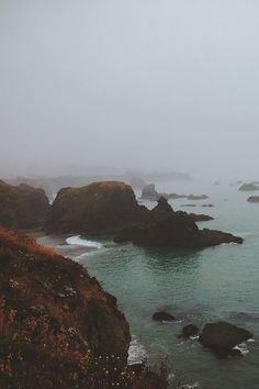 moody-nature:  The foggy pacific coast | ByLAURENTMARTINPHOTO...