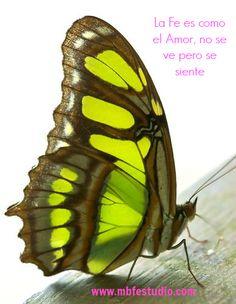 Claves para amarse a uno mismo : quererse hace bien http://www.mbfestudio.com/2014/02/claves-para-amarse-uno-mismo-quererse.html