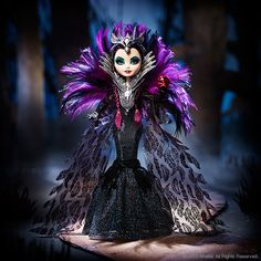 Raven Queen never wanted to be the next Evil Queen. But she always wondered why her mother tried to take over all fairy tales. By accepting her destiny, Raven may find some answers, not to mention som