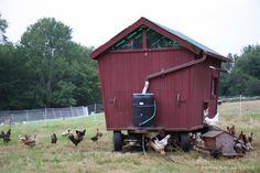 mobile chicken coop - Google Search