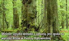 Andrzej Halicki (@AndrzejHalicki)   Twitter