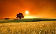 Nature Wallpapers, Hd Landscape Images, Nature Backgrounds, View ...