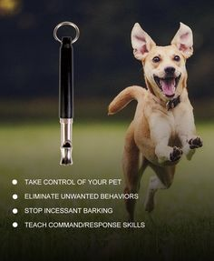 A WhistCall® Dog Training Whistle can be an valuable tool for teaching your dog new commands, re-enforcing good habits, and eliminating ...