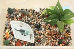 Counting Coconuts: Dinosaur sensory tub with water Sensory Tubs, Sensory Boxes, Sensory Activities, Kindergarten Activities, Sensory Play, Activities For Kids, Dinosaur Activities, Creative Activities, Preschool Ideas