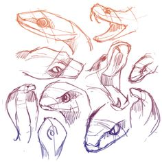 how to draw a snake for beginners