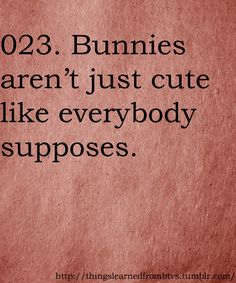 Things I learned from Buffy the Vampire Slayer #023 Bunnies are terrifying.