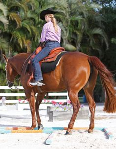 Test your horse's backing skills and response to leg pressure by working the L-shaped back-through.