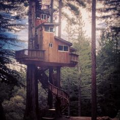 I want this treehouse. by onetwentyeight on Flickr.