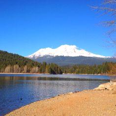 Mount Shasta beauty