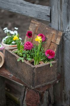 Just drop pretty potted flowers into wooden box. Beautifully simple!