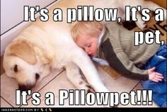 Best kind of Pillowpet there is!