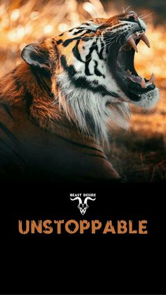 Tiger Quotes, Lion Quotes, Animal Quotes, Inspirational Quotes Wallpapers, Motivational Quotes Wallpaper, Wallpaper Quotes, Quotes Lockscreen, Wild Animal Wallpaper, Lion Wallpaper