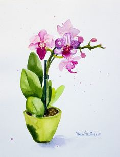 Watercolor Sketch, Watercolor And Ink, Watercolour Painting, Watercolor Flowers, Painting & Drawing, Watercolors, Art Floral, Beautiful Paintings Of Flowers, Orchids Painting