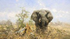 African Art Paintings, Animal Paintings, Contemporary Artists, 19th Century, Wildlife, Elephants, Prints, Creatures, David