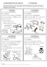 english worksheet exercises on winnie the witch activities pinterest. Black Bedroom Furniture Sets. Home Design Ideas