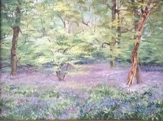 Original Oil Board Painting Picture Woodland Scene Bluebell Forest Spring Flower
