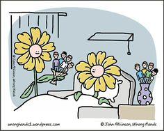 Flor humano