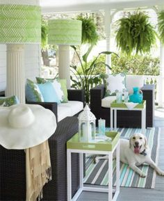 I love the use of the bright teal, seafoam, and grass green against the slate and grey. The pillar lamps and the ferns add height to the space without taking away the sense of air flow. There are strong angles but it is still cozy and crisp. The puppy clearly is grovin on the vibe.