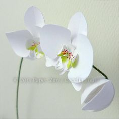 You have to see 3D Paper Orchid on Craftsy! - Looking for paper crafts project inspiration? Check out 3D Paper Orchid by member Cecelia Louie. - via @Craftsy