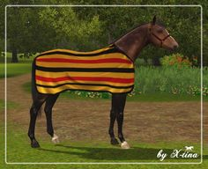 X-tina Sims Equestrian: Newmarket Stable Rug