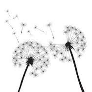 Image result for pusteblume gezeichnet