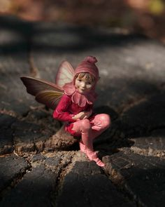 **Boy Fairy