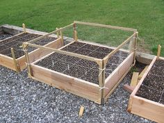 Individually-fenced garden boxes Fighting off chompers this season. Guess I need these!