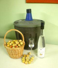 Best mirabelle eau de vie recipe on pinterest for Duree de vie d un chauffe eau