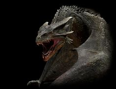 reign of fire | The Reign of Fire Wiki Navigation