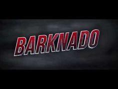 Move Over Sharknado, It's Barknado Time! Brilliant job ASPCA