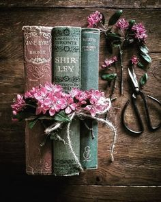 15 Amazing Books Girlbosses should read! These girlboss books are amazing and should be . Old Books, Antique Books, Vintage Books, Book Aesthetic, Aesthetic Pictures, Witch Aesthetic, Photos Amoureux, Charlotte Brontë, Look Wallpaper