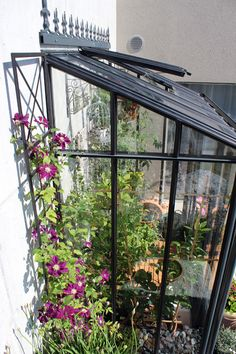 Eisen Pergola, Enjoying The Sun, Terrace Garden, Skylight, Outdoor Spaces, New Homes, Greenhouses, Plants, Inspiration