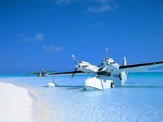 Sea plane ....Grumman Goose. The adventurer's plane of choice.