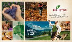 Liebe Urlaubsgrüße von den BIO HOTELS Bunt, Hotels, Cover, Books, Love, Libros, Book, Book Illustrations, Libri