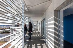 Studentenwohnheim in Togane; Studio Sumo; Foto: Kawasami Kobayashi