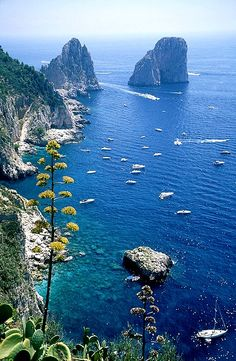 The Enchanting Island of Capri  Wanderlust  Pinterest