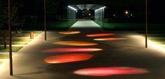 Pétales de Rose, Jardins du parc - Communauté d'Agglomération de St-Quentin en Yvelines - Conception lumière et photo Marc Dumas
