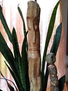 Skulptur aus Treibholz, 38 cm Asparagus, Vegetables, Plants, Food, Driftwood, Sculptures, Meal, Eten, Vegetable Recipes