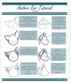 How to draw Furries (but can do the job for other than furries) ears